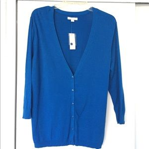 Georgeous Blue 3/4 Sleeve Button Down Cardigan